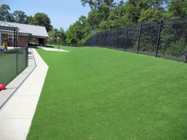 Artificial Grass Photos: Artificial Grass Carpet Borrego Springs, California Landscape Photos, Commercial Landscape