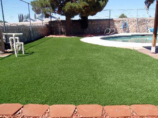 Artificial Grass Photos: Artificial Grass Carpet Calipatria, California Home And Garden, Swimming Pool Designs