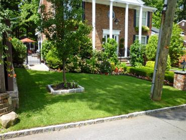Artificial Grass Photos: Artificial Grass Carpet Holtville, California Landscape Ideas, Front Yard Landscaping