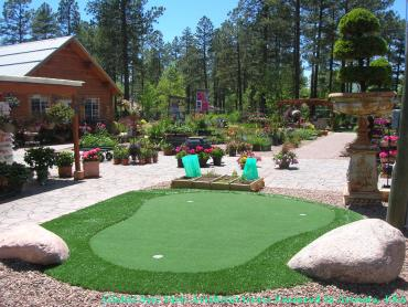 Artificial Grass Photos: Artificial Grass Carpet Niland, California Backyard Putting Green, Small Backyard Ideas