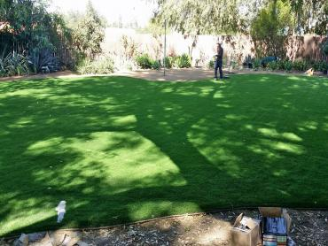 Artificial Grass Photos: Artificial Grass Carpet Rancho Santa Fe, California Design Ideas, Backyards
