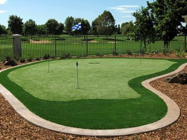 Artificial Grass Photos: Artificial Grass Descanso, California Putting Green Flags, Backyard Design