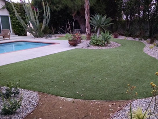 Artificial Grass Photos: Artificial Grass Encinitas, California Gardeners, Above Ground Swimming Pool