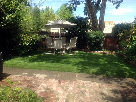 Artificial Grass Photos: Artificial Grass Heber, California Landscape Ideas, Backyards