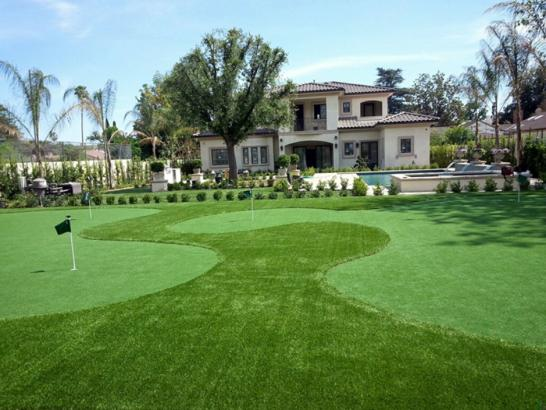 Artificial Grass Photos: Artificial Grass Installation Vista, California Backyard Putting Green, Front Yard Design