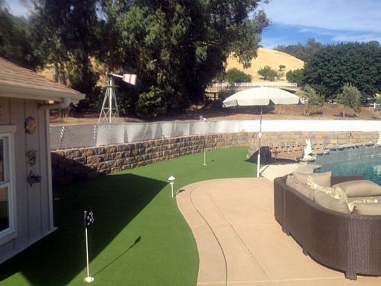 Artificial Grass Photos: Artificial Grass Niland, California Paver Patio, Backyard Landscaping
