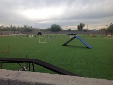 Artificial Grass Photos: Artificial Grass Ramona, California Backyard Sports, Parks