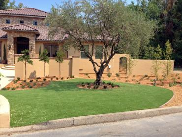 Artificial Grass Photos: Artificial Grass San Pasqual, California Roof Top, Front Yard Design