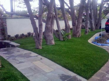 Artificial Grass Photos: Artificial Lawn Spring Valley, California City Landscape, Front Yard Landscape Ideas