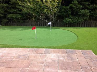 Artificial Grass Photos: Artificial Turf Cost Casa de Oro-Mount Helix, California Landscape Photos, Backyard Landscaping