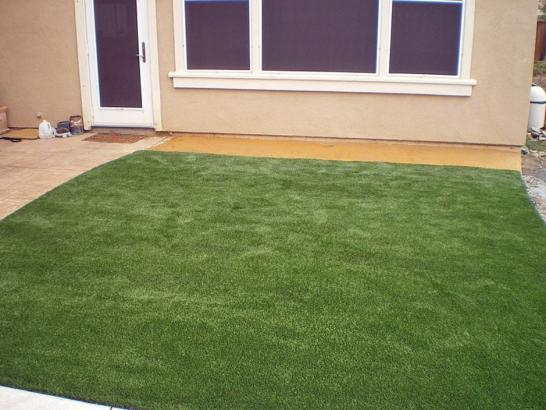 Artificial Grass Photos: Artificial Turf Cost Lakeside, California Garden Ideas, Backyard