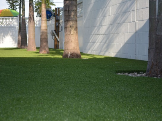 Artificial Grass Photos: Artificial Turf Cost Salton City, California Paver Patio, Commercial Landscape