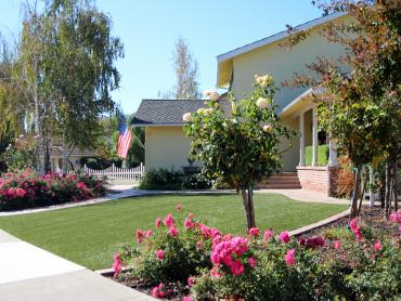 Artificial Grass Photos: Artificial Turf Desert Shores, California Landscape Photos, Front Yard