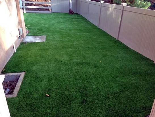 Artificial Grass Photos: Artificial Turf Installation Jamul, California Dog Park, Backyard Landscape Ideas