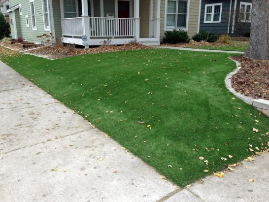 Artificial Grass Photos: Artificial Turf Installation Oceanside, California Lawn And Garden, Front Yard Ideas