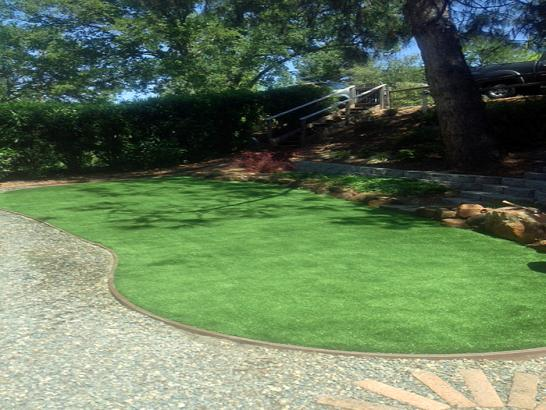 Artificial Grass Photos: Artificial Turf Salton City, California Landscaping Business, Backyard Landscaping