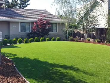 Artificial Grass Photos: Artificial Turf Vista, California Landscape Design, Front Yard Design