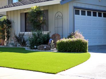 Artificial Grass Photos: Best Artificial Grass Fallbrook, California Lawns, Front Yard Landscaping Ideas