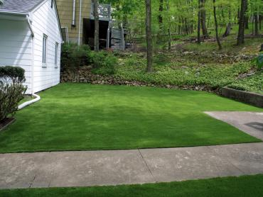 Artificial Grass Photos: Best Artificial Grass National City, California Lawns, Front Yard Landscaping