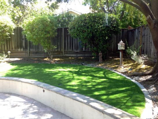 Artificial Grass Photos: Best Artificial Grass National City, California Backyard Deck Ideas, Commercial Landscape