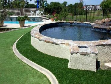 Artificial Grass Photos: Best Artificial Grass San Pasqual, California Landscape Design, Kids Swimming Pools