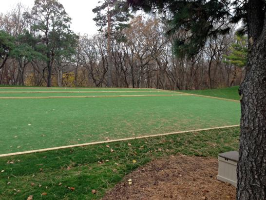 Artificial Grass Photos: Fake Grass Carpet Fallbrook, California Eco Friendly Products