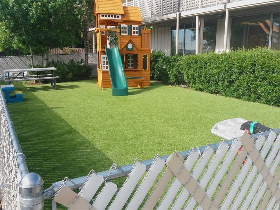 Artificial Grass Photos: Fake Grass Carpet La Presa, California Backyard Playground, Backyard Garden Ideas