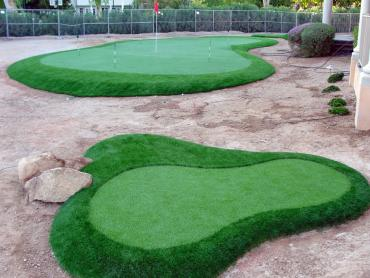 Artificial Grass Photos: Fake Grass Carpet Oceanside, California Landscape Rock, Front Yard Design