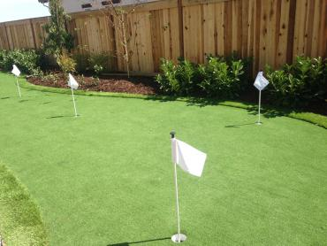 Artificial Grass Photos: Fake Grass Carpet Westmorland, California Indoor Putting Green, Backyard Landscape Ideas