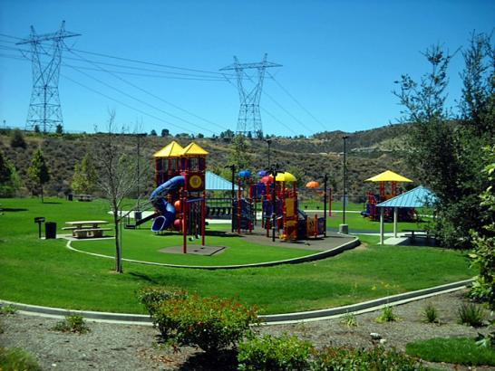 Artificial Grass Photos: Fake Grass Fairbanks Ranch, California Design Ideas, Recreational Areas