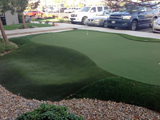 Artificial Grass Photos: Fake Grass La Jolla, California Golf Green, Commercial Landscape