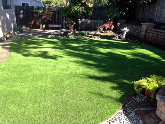 Artificial Grass Photos: Fake Lawn Calipatria, California Landscape Photos, Small Backyard Ideas
