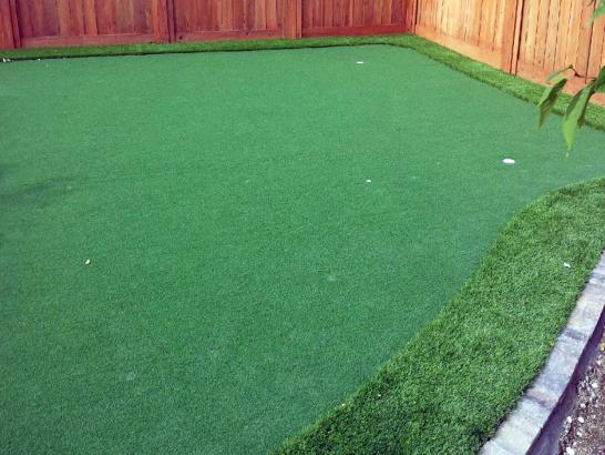 Artificial Grass Photos: Fake Lawn Descanso, California Diy Putting Green, Backyards