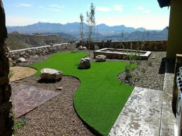 Artificial Grass Photos: Fake Lawn Desert Shores, California Landscape Ideas,  Backyard Ideas