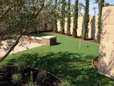 Artificial Grass Photos: Fake Turf Holtville, California Home Putting Green, Backyard Makeover