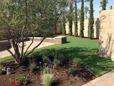 Artificial Grass Photos: Fake Turf La Presa, California Garden Ideas, Backyard Makeover