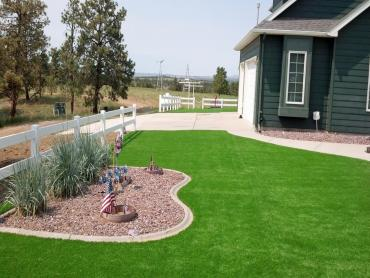Artificial Grass Photos: Faux Grass Camp Pendleton North, California Landscape Ideas, Front Yard Design