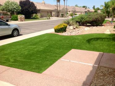 Artificial Grass Photos: Faux Grass El Cajon, California Home And Garden, Front Yard