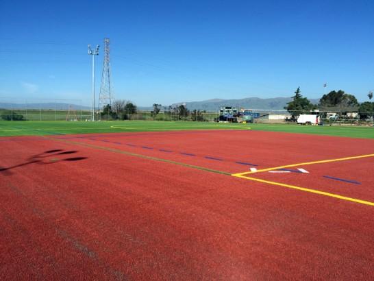 Artificial Grass Photos: Faux Grass Julian, California Stadium