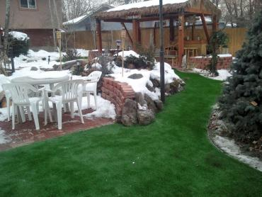 Artificial Grass Photos: Grass Carpet Alpine, California Paver Patio, Cold Weather