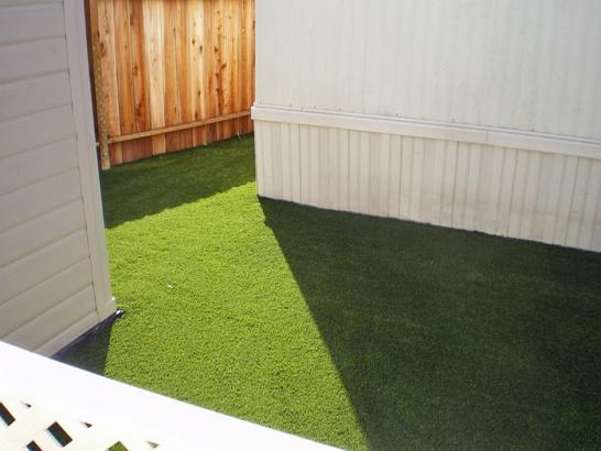 Artificial Grass Photos: Grass Carpet Crest, California Artificial Turf For Dogs, Backyard Garden Ideas