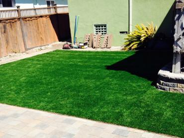 Artificial Grass Photos: Grass Carpet Harbison Canyon, California Backyard Playground, Small Backyard Ideas