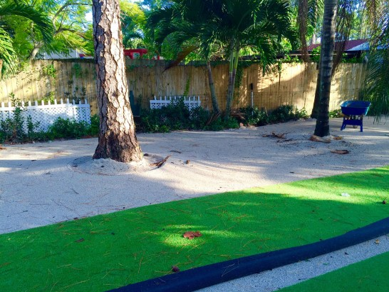 Artificial Grass Photos: Grass Carpet Niland, California Rooftop, Recreational Areas