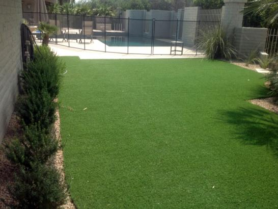 Artificial Grass Photos: Grass Carpet Valley Center, California Landscaping Business, Pool Designs