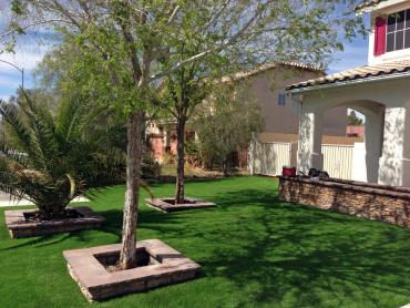Artificial Grass Photos: Grass Turf Lemon Grove, California City Landscape, Front Yard Landscaping