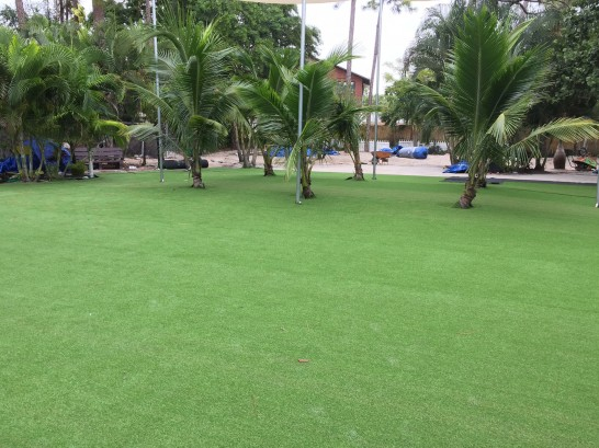 Artificial Grass Photos: Green Lawn La Jolla, California Paver Patio, Commercial Landscape