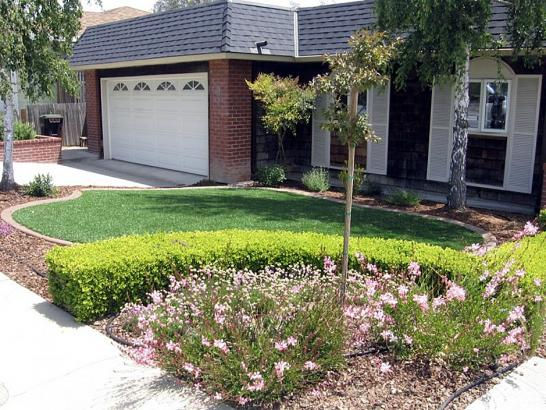 Artificial Grass Photos: Green Lawn Lake San Marcos, California Garden Ideas, Front Yard