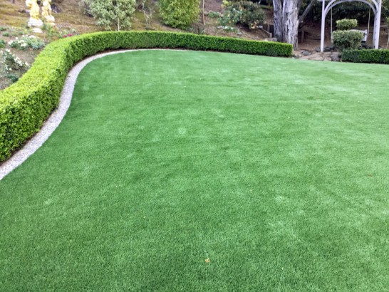 Artificial Grass Photos: Green Lawn Rancho Santa Fe, California Lawns, Backyard