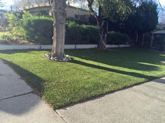 Green Lawn Vista, California Gardeners, Front Yard Landscape Ideas artificial grass