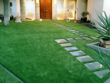 Artificial Grass Photos: How To Install Artificial Grass Harbison Canyon, California Lawn And Landscape, Front Yard Landscape Ideas